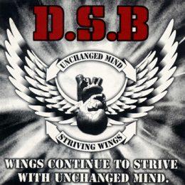 dsb-wings