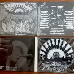 sa-int-cd