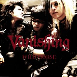 vanishing-wildhorse